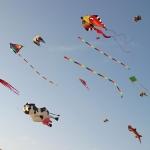 fehmarn-drachenfestival002