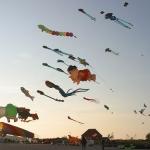 fehmarn-drachenfestival005