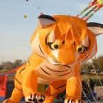 fehmarn-drachenfestival008