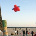 fehmarn-drachenfestival014