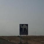 tunesien-reise11
