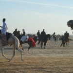 tunesien-reise16