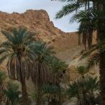 tunesien-reise31