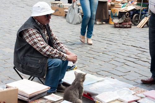 Büchermarkt mit Katze