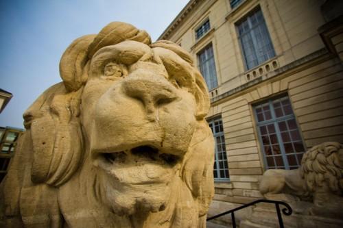 Einer von vier Löwen vor dem Hôtel de Ville.