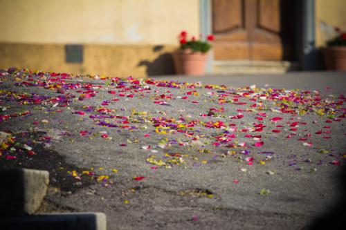 Blütenblätter auf dem Prozessionsweg.