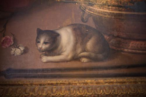 Katzencontent II