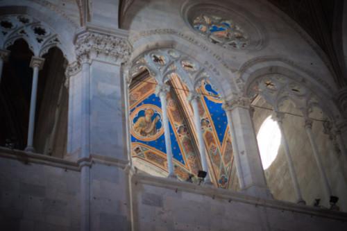 Die Decken im Dom von Lucca: etwas bunt, oder?