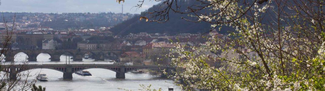 Prager April, Teil 2