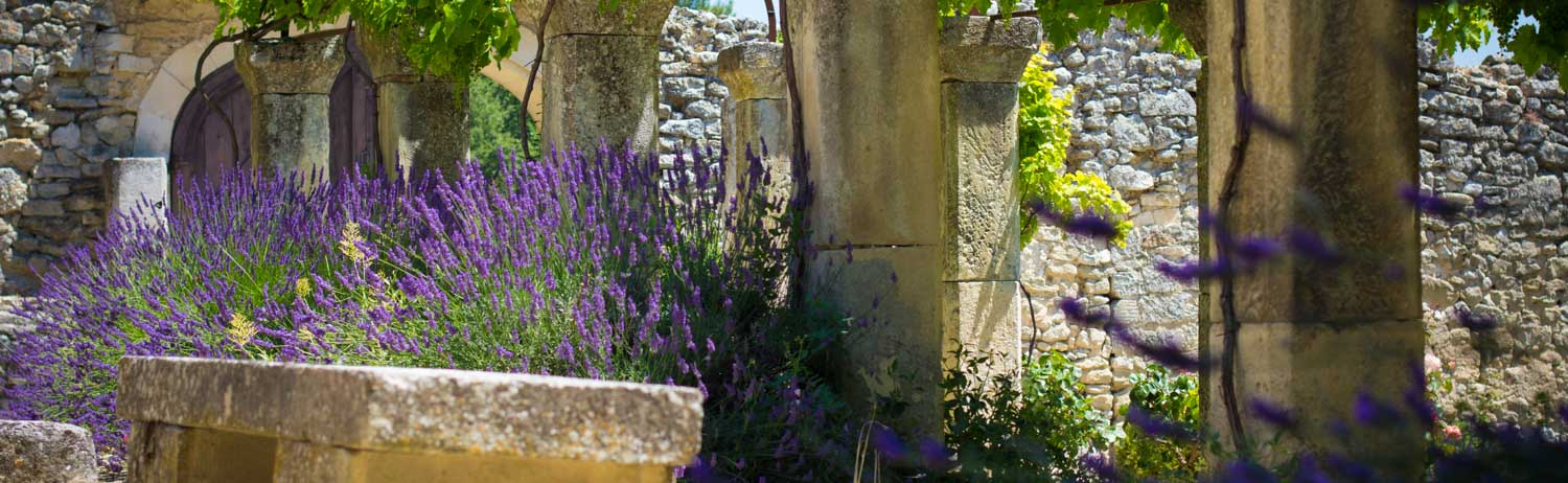 Die andere Seite des Vaucluse-Sommers