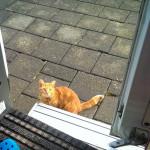 Nein, ich komme nicht rein
