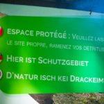 Was der Übersetzer raucht, hätte ich auch gerne.