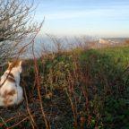 Pösslchen rollt …zum Jahreswechsel in die Normandie