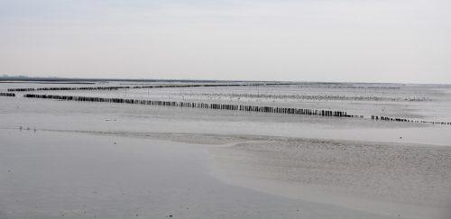 Wohnmobil Friesland Winter Wattenmeer