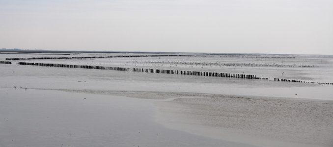 Ein bisschen Leeuwarden, etwas Wattenmeer und Bilderbuchfriesland
