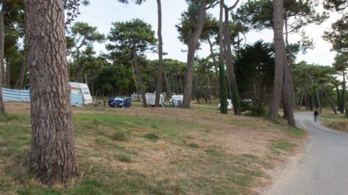 Camping Municipal in den Pinien: jeder sucht sich sein Plätzchen