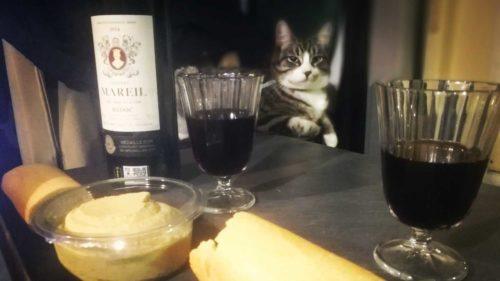 Katze liegt auf Tasche im Wohnmobil, auf dem Tisch Rotwein und Baguette